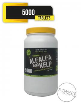 Alfalfa & Kelp 5000 tablets - High in HMB